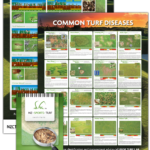 Combo: Disease and Pest Posters and Disease Identification Field Guide